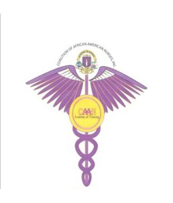 Nurse Academy Matteson Il Caan Academy Of Nursing
