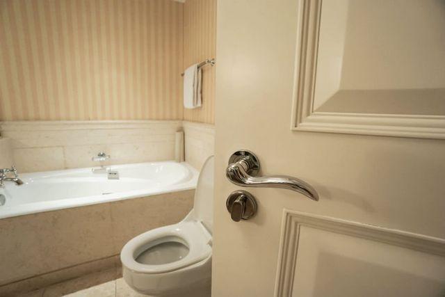 Brilliant Security Considerations For Bathroom Locks Dixie Security Interior Design Ideas Gentotryabchikinfo