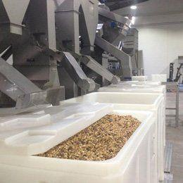 Walnut Hopper Bins