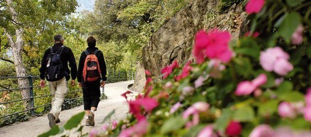 escursionisti passeggiano tra la natura