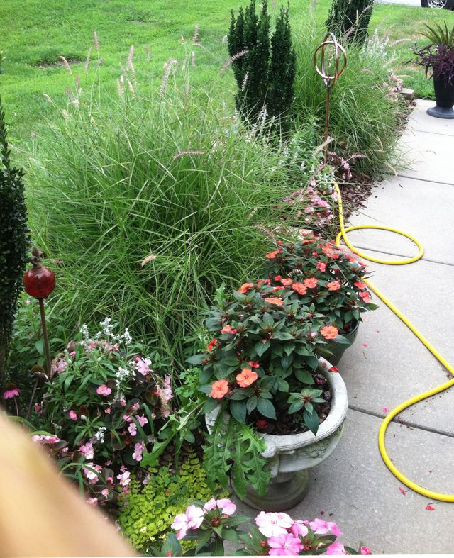 Landscaping Service Greensboro, NC