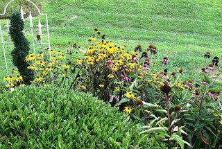 Landscaping Service Greensboro, NC