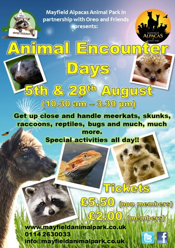 Summer Animal Encounter Poster