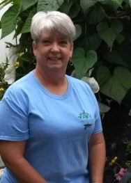 Susie Lowe Houseplant Manager