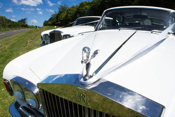 Wedding car hire tauranga prestige rolls royce wedding car service requests such as arranging for elegant trims and decorations to complement the overall aesthetic of your wedding our classic wedding cars are available junglespirit Gallery