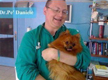 un veterinario con un cane in braccio