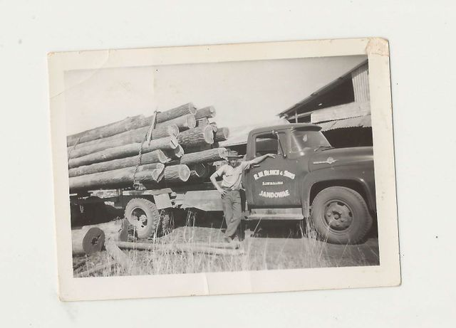 View of professional standing in front of a timber loaded truck