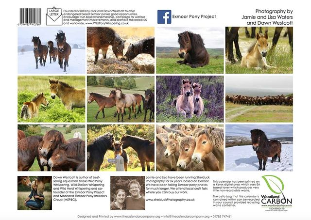 c725dc06e1 The 2019 Exmoor Pony Project Calendar!