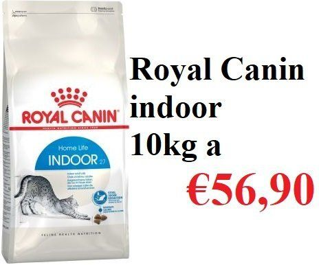 Royal Canin Indoor Varese