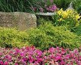 Settaggio giardinaggio