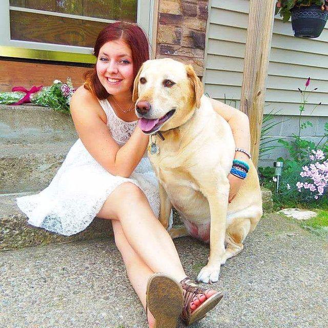 Dog Daycare in Saratoga