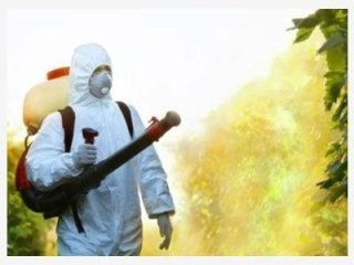 disinfestazione ambientale