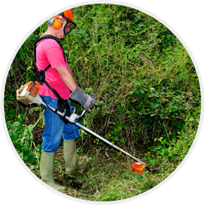 Site clearance experts