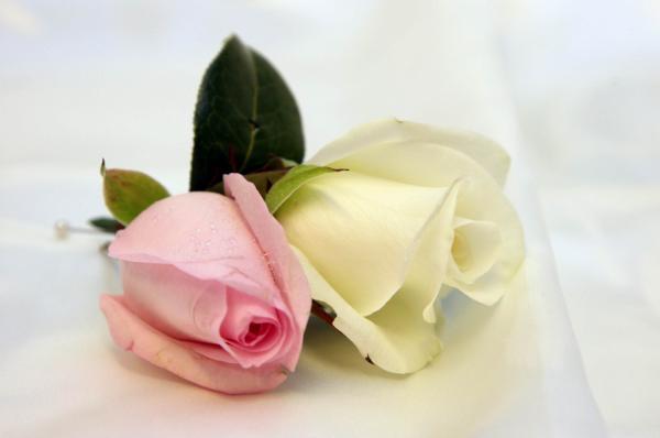 rose wrist corsages