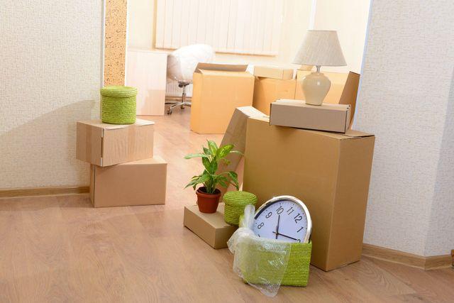 degli scatoloni in una casa con dei vasi con delle piante, un orologio e una lampada