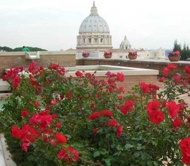 vista di san pietro da un tetto con fiori rossi