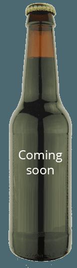 Generic beer bottle