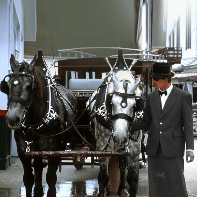 Horse-drawn hearse