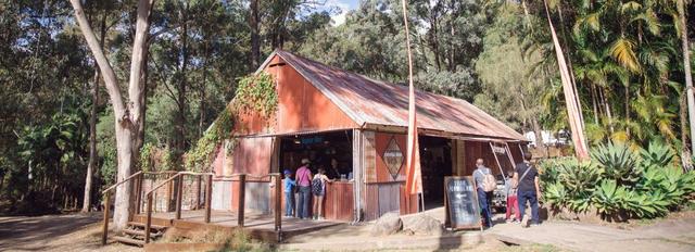 Thunderbird Park: Thunderegg Fossicking | Tamborine Mountain, QLD