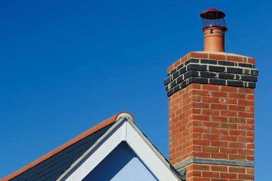 bird guards for chimneys