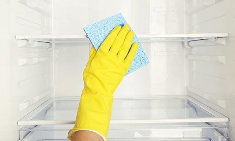 refrigerator cleaning