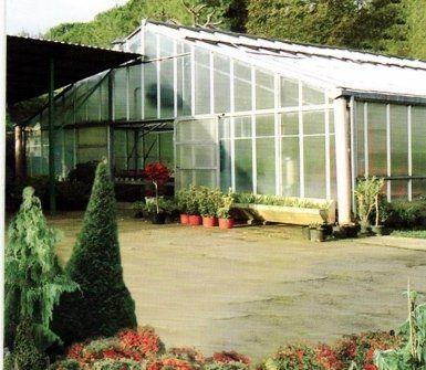 preventivi realizzazione giardini, preventivi manutenzione giardini, costi giardinieri