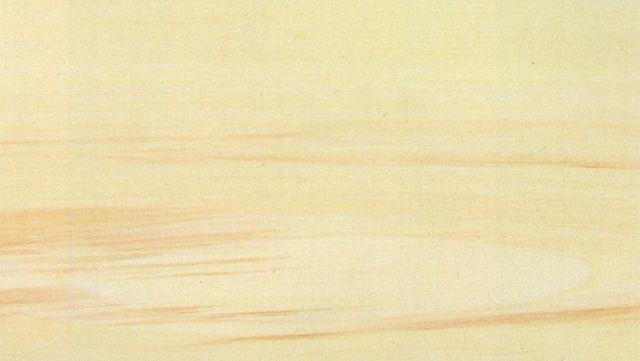 legno di pioppo