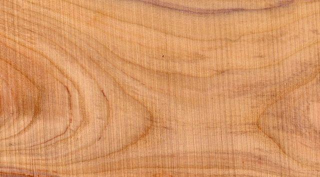 legno di platano