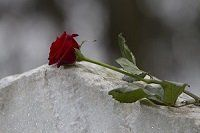 burial service planning how to plan a funeral funeral planning