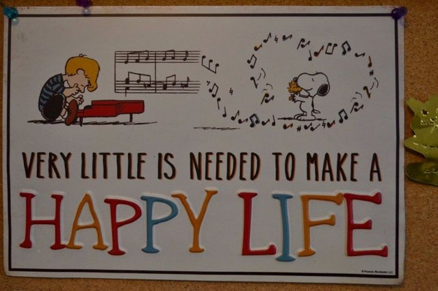 Piano Lessons Make a Happy Life
