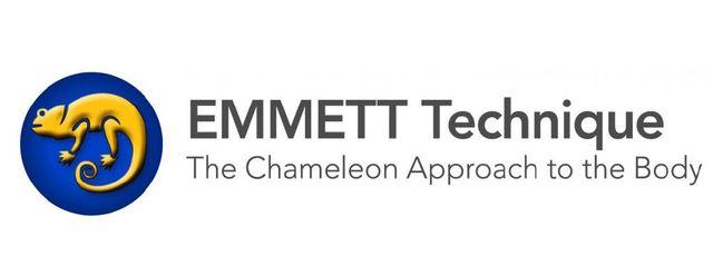 emmett accreditation logo