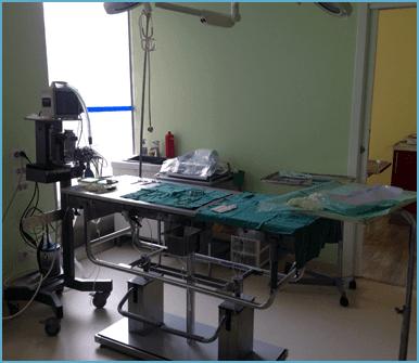 oncologia veterinaria