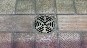 Royal Flush Sewer Amp Drain Cleaning Service Sewer Water