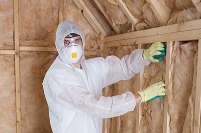 Insulation Removal St Petersburg Fl Time Insulation