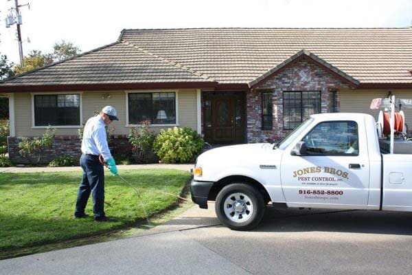 A Man Performing Rodent And Ant Control In Sacramento, Ca