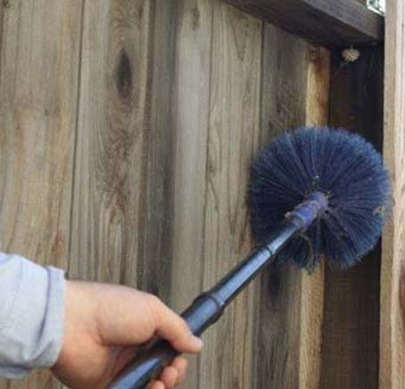 Pest Management — Removing Pests in Rancho Cordova, CA