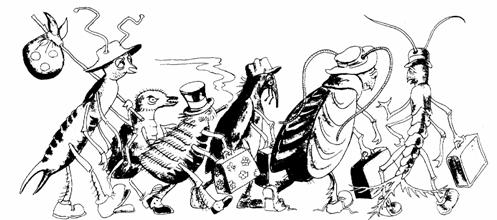 Pest Control — Pests Art Illustration in Sacramento, CA