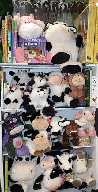 Children's Gift Shop Albany, NY