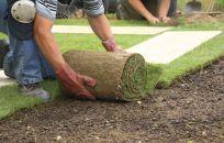 Gardening team working on landscape design in Archdale, NC