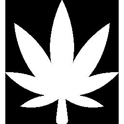 Drug Testing Midland, TX