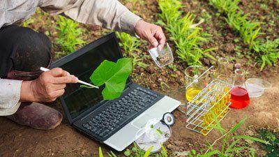 Tecnico effettua delle analisi chimiche su un orto con un computer