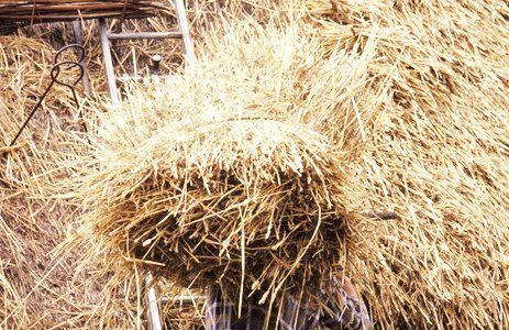 High-quality thatching materials