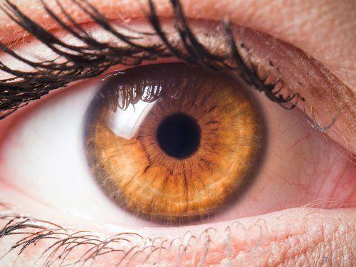 primo piano di un occhio di donna