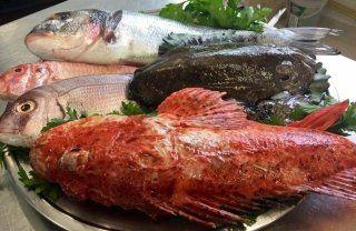 pesce fresco su vassoio