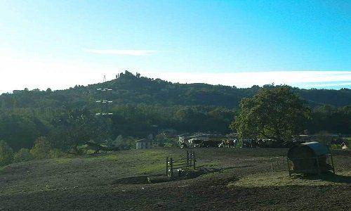 prati e colline verdi
