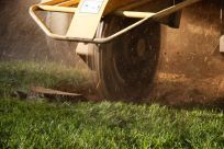 storm clean-up services in Indian Trail, NC