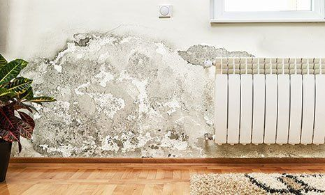 Effective treatment of rising damp in North London