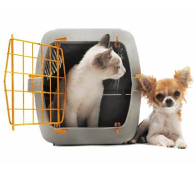 gabbiette per animali