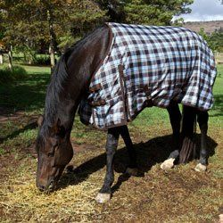 Best Quality Horse Rug Cleaning Products
