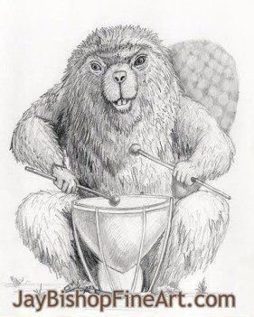 Drumming Beaver